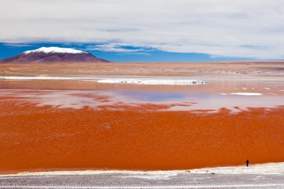 Laguna Colorada – Bolivie